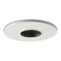 "Nora Lighting - Nora NL-420 4"" White Trim with 2"" Pinhole and Black Baffle - 4"" White Trim with 2"" Pinhole and Black Baffle"