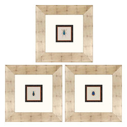 Paragon - Insects PK/3 - Framed Art - Each product is custom made upon order so there might be small variations from the picture displayed. No two pieces are exactly alike.
