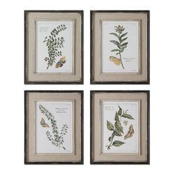 Uttermost - Uttermost 51079 Butterfly Plants Framed Art Set of 4 - Prints are accents by heavily distressed, black outer wooden frames with heavily textured, off-white inner lips with a heavy taupe wash. Center portion of frames are covered in a sand faux linen.