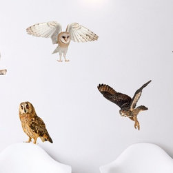 Walls Need Love - Owls Say Hoot Decals - Wise and discerning, these adhesive owls are sure to bring an element of relaxation and comfort to your home! As easy on the eyes as they are on your walls, adhesive wall art won't disappoint.