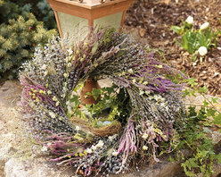 "Frontgate - Robin's Nest Wreath - 22"" - Crafted from a mix of natural air-dried materials and faux eggs. Designed for indoor use or protected outdoor display. Extend the life of floral materials by keeping it away from direct sunlight and moisture. Add a romantic greeting above your mantel or upon your vestibule door. Gatherings of dried foliage protect a petite nest of Robin's eggs, for a graceful warm-weather display. Each size includes gatherings of air-dried Munstead lavender, setaria, yellow fennel flower, white winged everlasting, blue larkspur, vibrant statice, and sprigs of bright moss, all on a quail-brush twig base.. . ."
