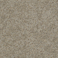 Contemporary Carpet Flooring by Shaw Floors