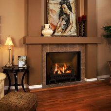 Traditional Family Room by CJ's Home Decor & Fireplaces