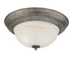 Forte Lighting - Forte Lighting 2129-02 Flushmount Ceiling Fixture from the Close To Ceiling Coll - Flushmount Ceiling FixtureFeatures Marble Glass2-75w Max Medium Base (Bulb Not Included)