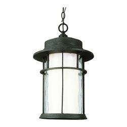 Trans Globe - Trans Globe 5295 Rt 1-Light Hanging Lantern - Trans Globe 5295 RT 1-Light Hanging Lantern
