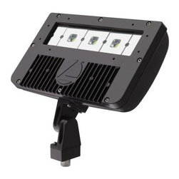 Lithonia Lighting - Lithonia Lighting Flood Lights. Outdoor Dark Bronze LED Flood Light - Shop for Lighting & Fans at The Home Depot. The LED adjustable head DSXF2 Flood Light from Lithonia Lighting is ideal for landscape, signage and accent lighting in many commercial and residential applications. The LED flood light ensures that you will never have to change a bulb. The die cast-aluminum housing is built to withstand corrosion assuring lasting durability.