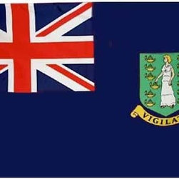 Flagline - British Virgin Islands - 4'X6' Nylon Flag (Blue) - If you are a serious flag collector or if you plan on displaying your flag outdoors, you should consider our line of Nylon flags. Our Nylon flags are made of 100% 200 denier Nylon, finished with canvas headings and brass grommets, primarily for outdoor use. Nylon flags are heavier than lightweight polyester and stand up well to sun and rain exposure. A Nylon flag provides a longer life of service and enjoyment.