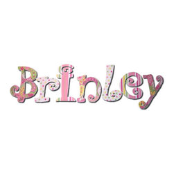 RR - Brinley Girly Paisley Hand Painted Wall Letters - Girly Paisley Hand Painted Wall Letters