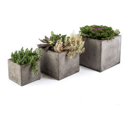 Repose Home - Cubo Planter, Charcoal Grey, Large - This beautiful Cubic style planter is cast from cement and natural fiber for added strength while keeping a lightweight feel for versatile use. Artfully showcase garden greenery with its gorgeous organic tone.
