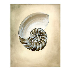 Seashells I Unframed Giclee with Crackle Finish - Beautifully sketched in a range of neutrals, Seashells I has the refined classicism of high art. The subject of this giclee print is a chambered nautilus shell; its tight inner spiral, ancient symbol of secrets and discovery, is the focus of the lovely artwork. The sand and charcoal colors make it easy to fuse this wall art piece with nautical decor or with a traditional study setting.