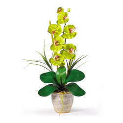 Nearly Natural - Phalaenopsis Silk Orchid Flower Arrangement - Not for outdoor use. Six beautiful blooms and two buds. Lush green natural looking leaves. Beautifully stylish ceramic pot. Included container size: 5.25 in. W X 4.25 in. H9 in. W X 6 in. D X 21 in. H (3lbs). Bursting with color and personality the Phalaenopsis is perhaps the most popular variety of all the orchids. Six lively blooms and two buds are complimented by genuine bamboo, which enhances the silk plant's authenticity. Featuring nearly natural leaves, moss and roots, this familiar favorite is sure to charm the masses.