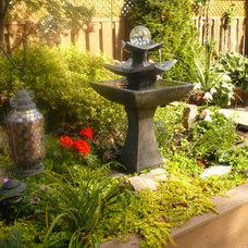 grown in Zen garden
