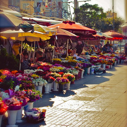 Flowers For Sale-Istanbul, Fine Art Photography Print, 10X15 - This photo was taken in Istanbul, Turkey near Taksim Square. September 2010.
