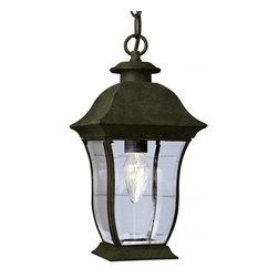 Joshua Marshal - One Light Black Clear Beveled Curved Rectangle Glass Hanging Lantern - One Light Black Clear Beveled Curved Rectangle Glass Hanging Lantern