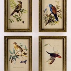 """IMAX CORPORATION - Wooden Bird Plaques - Set of 4 - Delicate hand painted transfer bird prints in gold frames. Set of 4 in various sizes measuring around 17.5""""L x 11.75""""W x 16""""H each. Shop home furnishings, decor, and accessories from Posh Urban Furnishings. Beautiful, stylish furniture and decor that will brighten your home instantly. Shop modern, traditional, vintage, and world designs."""