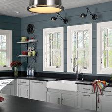 Modern Windows by Lion Windows and Doors