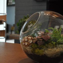 Original Plant Creations - Melissa Hamburg, Large table top unique terrarium.