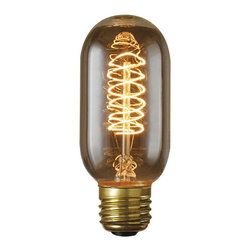 Bulbrite - Bulbrite 40W Torch Spiral Incandescent Edison Light Bulb - 8 pk. Multicolor - BU - Shop for Light bulbs from Hayneedle.com! The winding coils of the Bulbrite 40W Torch Spiral Incandescent Edison Light Bulb - 8 pk. give it a great vintage appeal. This dimmable bulb is versatile enough to suit nearly any setting.About BulbriteBulbrite is a family-owned company started in 1971 and based in Moonachie New Jersey. Bulbrite is renowned for their commitment to innovation education and service. They are a leading manufacturer and supplier of innovative energy-efficient light source solutions. Bulbrite is an award-winning company. Most recently their president Cathy Choi received the 2010 Residential Lighting Industry Leadership Award and the Bulbrite Swytch LED Desk Lamp received the 2010 Home Furnishing News Award of Excellence. They have introduced award-winning products and offer an extensive line of light bulbs including LEDs HID compact fluorescents fluorescents halogens krypton/xenon incandescent bulbs and specialty lamps. Bulbrite is an active member of the ZHAGA the American Lighting Association a silver sustaining member of the Illuminating Engineering Society of North American (IESNA) an Energy Star Partner a Lighting Facts LED Product Partner a member of LUMEN Coalition and a member of the International Dark Sky Association.