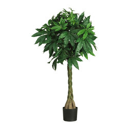 Nearly Natural - 51in. Money Silk Tree - Want to add a touch of good fortune and positive energy to your home or office cubicle? Then this bonsai style money tree - with its lush, green flowerlike leaves perched upon authentic looking braided trunks - fits the bill perfectly. Besides being beautiful, many stems sport the ultra 'lucky seven' leaves, making it the perfect charm to (hopefully) boost your financial wealth. Standing just over fifty inches tall, it fits perfectly next to a desk or in an office entryway.