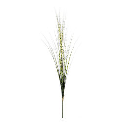Silk Plants Direct - Silk Plants Direct Grass Plume (Pack of 12) - Green - Pack of 12. Silk Plants Direct specializes in manufacturing, design and supply of the most life-like, premium quality artificial plants, trees, flowers, arrangements, topiaries and containers for home, office and commercial use. Our Grass Plume includes the following: