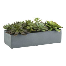Succulents in a Pot - No green thumb? Or, in my case, no light? I like to include these realistic fake plants in spaces that can't support the real things.
