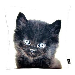 Lava - Black Persian Cat 18 x 18 Decorative Pillow (Indoor/Outdoor) - 100% polyester cover and fill. Suitable for use indoors or out. Made in USA. Spot clean only
