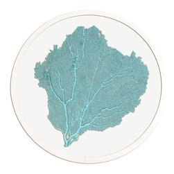 Framed Sea Fan 24 Round in Teal - Choose a wall in your home with an intriguing color and bring that favorite shade to life by hanging a round sea fan artwork on it.  Authentic sea fans are carefully selected and prepared to serve as the focal of these artworks, then pressed between panes of glass to preserve and display them.  A hand-finished silver frame surrounds the sea fan, letting you enjoy oceanic texture along with the unique pleasure and appeal of round wall art.