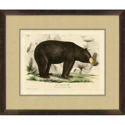 Wendover Art - American Black Bear - This striking Giclee on Paper print adds subtle style to any space. A beautifully framed piece of art has a huge impact on a room for relatively low cost! Many designers and home owners select art first and plan decor around it or you can add artwork to your space as a finishing touch. This spectacular print really draws your eye and can create a focal point over a piece of furniture or above a mantel. In a large room or on a large wall, combine multiple works of art to in the same style or color range to create a cohesive and stylish space!