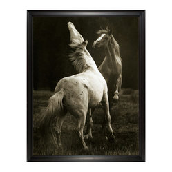 Playing Pair Horse Photo Wall Art, Large Framed