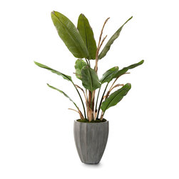 New Banana Tree Botanical - An exclusive realistic technique for executing convincing banana foliage yielded this stunning, naturalistic artificial tree for your upscale home. Excellent for adding organic softness to the hard surfaces and glossy finishes of a high-end bath, the New Banana Tree Botanical is superb for filling an out-of-the-way corner or troubling the transition from outdoors to in.