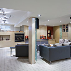 Contemporary Basement by Shelley Kirsch Interior Design and Decoration