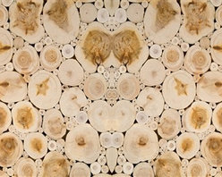 Walls Republic - Stumps Mural Wallpaper M8923 - 4 Panels - Stumps is a large scale digitally printed wallpaper mural with a pattern of cut wood logs. This natural pattern is a great backdrop for creating an organic feel in your dining rooms, hallways, and bedrooms. Due to this item being a custom order, it takes longer to ship than our regular products.