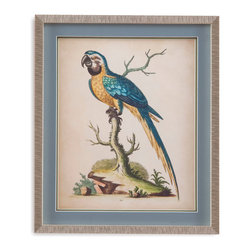 Bassett Mirror - Bassett Mirror Framed Under Glass Art, Edwards Parrots II - Part II of the Edwards Parrots series, this tropical-style print features bright and proud parrot perched upon a branch. Framed under glass in a beautiful contemporary 1-inch silver frame, this piece's bright blues and yellows against the background's soft tan will add a striking feature to almost any room in your home.
