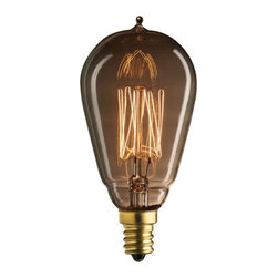 Bulbrite - Bulbrite 25W Thread Filament ST15 Incandescent Edison Light Bulb - 8 pk. Multico - Shop for Light bulbs from Hayneedle.com! What's old is new again when you use the Bulbrite 25W Thread Filament ST15 Incandescent Edison Light Bulb - 8 pk. in your vintage-inspired home. The perfect bulb to accent your retro decor the stylish look gives the kind of antique appeal you don't find in modern design.About BulbriteBulbrite is a family-owned company started in 1971 and based in Moonachie New Jersey. Bulbrite is renowned for their commitment to innovation education and service. They are a leading manufacturer and supplier of innovative energy-efficient light source solutions. Bulbrite is an award-winning company. Most recently their president Cathy Choi received the 2010 Residential Lighting Industry Leadership Award and the Bulbrite Swytch LED Desk Lamp received the 2010 Home Furnishing News Award of Excellence. They have introduced award-winning products and offer an extensive line of light bulbs including LEDs HID compact fluorescents fluorescents halogens krypton/xenon incandescent bulbs and specialty lamps. Bulbrite is an active member of the ZHAGA the American Lighting Association a silver sustaining member of the Illuminating Engineering Society of North American (IESNA) an Energy Star Partner a Lighting Facts LED Product Partner a member of LUMEN Coalition and a member of the International Dark Sky Association.