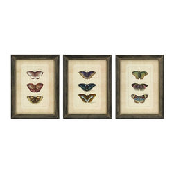IMAX Worldwide Home - Butterfly Collection Wall Art - Set of 3 - Set of three framed colorful butterfly study prints. Wall Art. 16.25 in. H x 12.25 in. W. 100% MDF