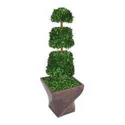 Laura Ashley - 54 in. Natural Spiral Boxwood Cone Topiary -Fiberstone Planter - This preserved boxwood topiary will instantly liven up your home or office decor.. No need to shop for a planter separately - comes complete with decorative planter. Comes with a Spritzer; all you have to do is spray it once a month.. All Natural Preserved Boxwood Leaves.. 17 in. L x 17 in. W x 53.5 in. H (12 lbs.)