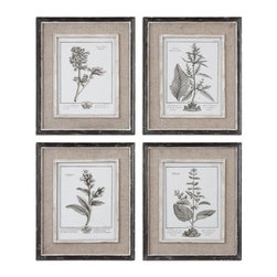 Uttermost - Uttermost 32510 Casual Grey Study I Ii Iii Iv Set of 4 Wall Art - Uttermost 32510 Grace Feyock Casual Grey Study I Ii Iii Iv Set of 4 Wall ArtPrints are surrounded by light tan burlap mats. Frames have a heavily distressed black finish with a gray and taupe wash. The inner lips and liners have a medium wood tone base with heavily distressed painted white finish with a gray & taupe glaze.Features: