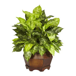 Variegated Dieffenbachia with Large Hexagon Silk Plant - The leafy Dieffenbachia, with its golden green leaves, adds a sense of purpose to any room. The plant's leaves look so lustrous, that anyone could be fooled into thinking this wonderful looking plant is the real thing. Housed inside an excellent quality wooden planter, the whole visual display leaves a lasting impression that will remain strong for years to come. Height= 24 in x Width= 24 in x Depth= 24 in