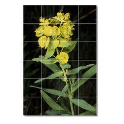 Picture-Tiles, LLC - Plants Photo Kitchen Tile Mural 5 - * MURAL SIZE: 36x24 inch tile mural using (24) 6x6 ceramic tiles-satin finish.