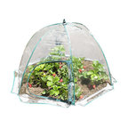 Zenport - Umbrella Greenhouse - Zenport SH3225C-A Umbrella Greenhouse for Protected Patio, Balcony Plant Growing and Gardening for extra protection from the elements during the colder months, this lightweight PVC cloche is easy to put up and has zipped access on one side. Folds flat for storage. Measures 43-Inch wide by 25-Inch tall.