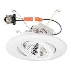 "Designer Fountain - 6"" LED Recessed Retrofit - 6 inches LED recessed retrofit kit."