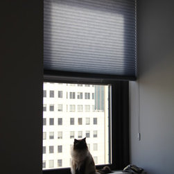 Emma In Downtown Brooklyn Has Solar Shades & Honeycomb - In the bedroom she really wanted to cut down on the morning Sun and the light from neighboring buildings at night. Here she went with Honeycomb in a Sky Blue to further compliment her bedding and wall color and added loop control for easy operation.