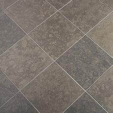 Contemporary Floor Tiles by ANN SACKS