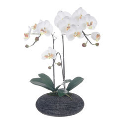 Red Vanilla - White Artificial Silk Phalaenopsis Orchid Centerpiece in Rock Base - This white Phalaenopsis orchid blooms in a rock-like base to create a gift of stylish simplicity and grace. Tall and luscious,this true-to-life orchid brings greeenhouse beauty to any indoor setting.
