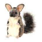 Hansa - Hansa Chauncey Chinchilla - Hansa Chauncey Chinchilla is handcrafted of plush.  Ages 3 and up. Airbrushed for detail.