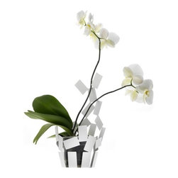 """Alessi - Stanza Scirocco Vase Cover in White - The Stanza dello Scirocco, a project designed by Mario Trimarchi and presented in 2009 consisting of a small Basket, a tea light holder, a Fruit holder, a centerpiece, and a fruit bowl, has been enlarged to include a vase cover for orchid. Thanks to its light, airy form, this vase cover allows you to perceive a space of light and shadow between the container and its contents. This precious effect is cleverly obtained in a by inserting transparent floral water tubes, like the plastic ones normally used with orchids, into small vase covers. The part of the vase cover that extends upward holds the orchids' stems erect, thereby eliminating the unsightly supports normally used. Features: -Color: White. -Material: Steel colored with epoxy resin. -Dimensions: 14"""" H x 7.5"""" W x 7"""" D."""