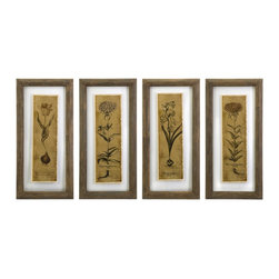 Botanical Sketches Double Glass Print Wall Art - Set of 4 - *Lovely botanical sketches embraced between two glass panels appear to float above any surface.