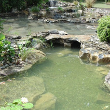 Traditional  by BJL Aquascapes