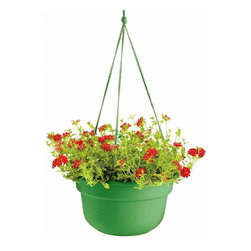 Bloem - Bloem 12in Dura Cotta Hanging Basket Living Green DCHB1242, 12 pack - Plastic planters offer affordable beauty without heavy weight or risk of breakage.