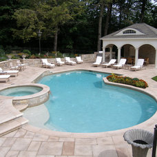 Contemporary Swimming Pools And Spas by Aqua Pools